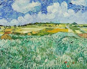 van Gogh, Vincent : The Plain at Auvers