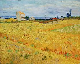 V.v.Gogh, Wheat Field / Paint./ 1888
