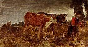 Farmer with cows