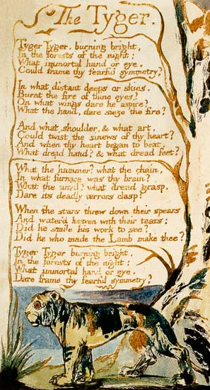 the tyger by william blake A critical reading of an iconic poem 'the tyger' is arguably the most famous poem written by william blake (1757-1827) it's difficult to say which is more well-known, 'the tyger' or the poem commonly known as 'jerusalem.