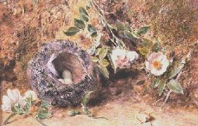 Still Life with Chaffinch Nest